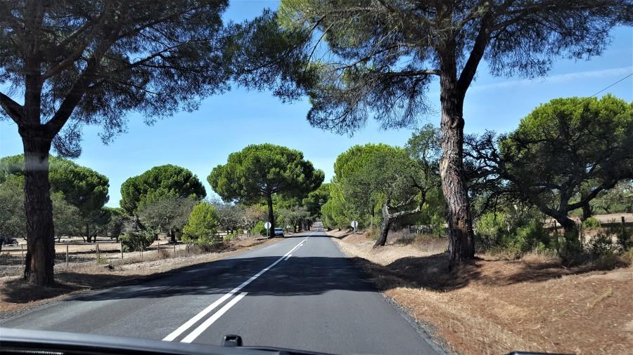 Roadtrip_portugal